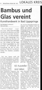 artikel-paderborn-1